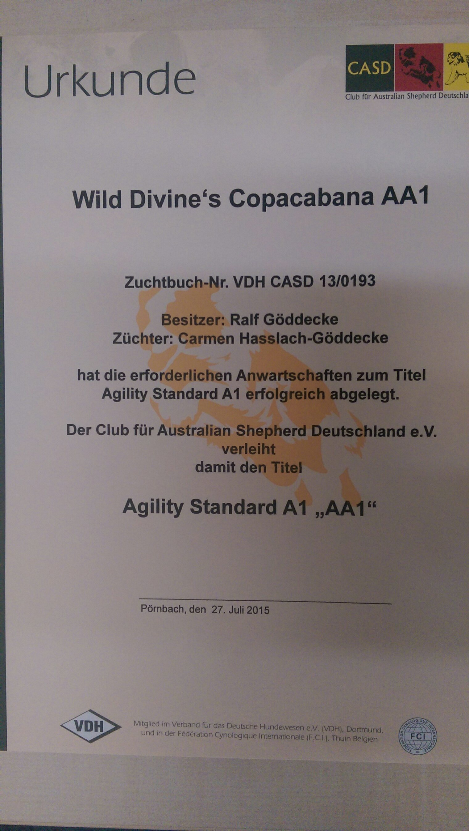 Agility  A 1 Titel Cate
