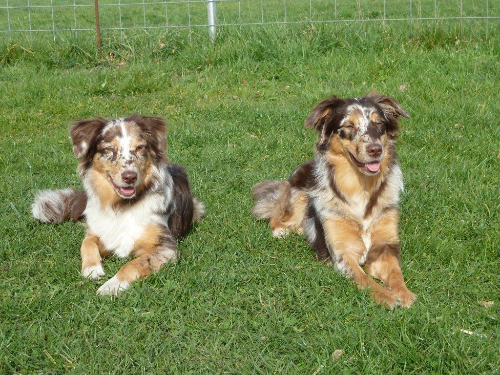 Cate und Schwester Cassy